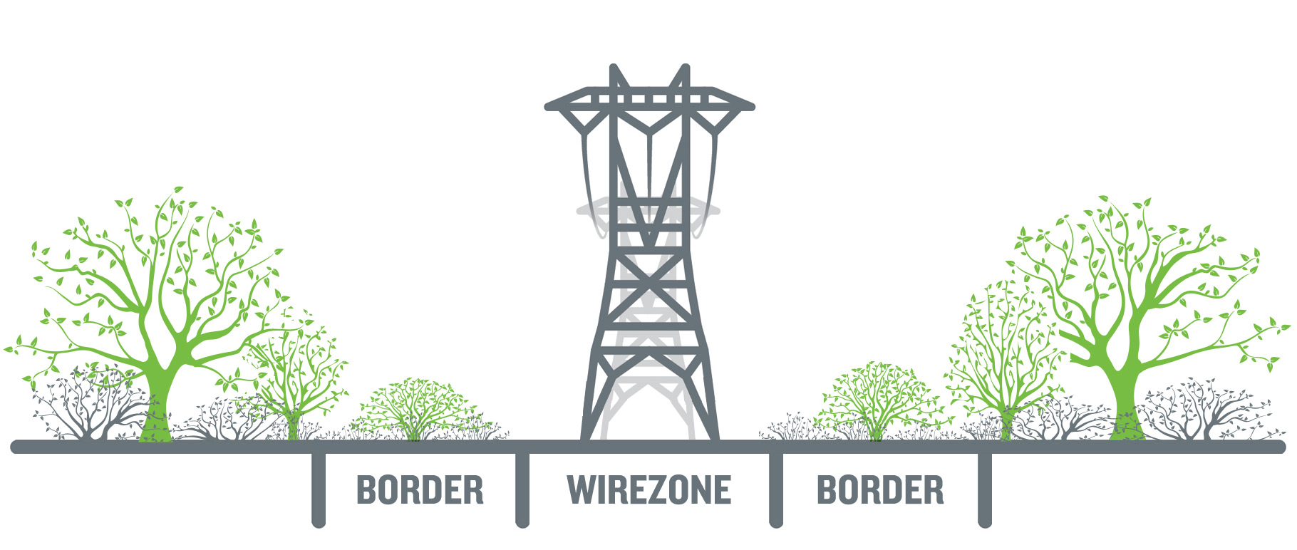 A vegetation border must be maintained on either side of the Wirezone below transmission lines.