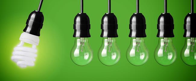 bombillas en un fondo verde